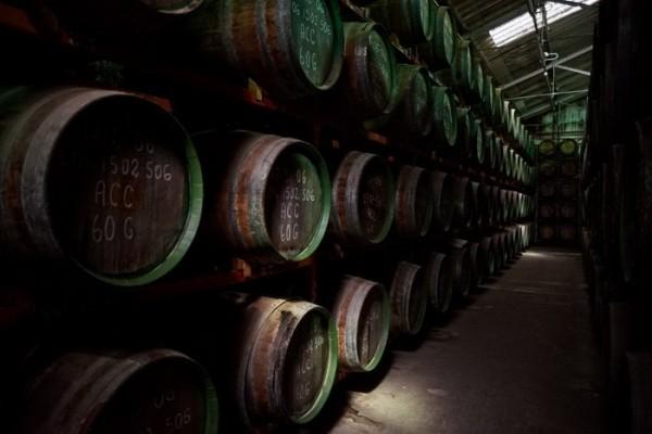 история виноделия на Канарах