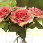 Как сохранить розы дольше